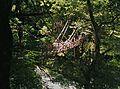 かずら橋2 - panoramio.jpg