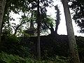 丸山公園 - panoramio (2).jpg