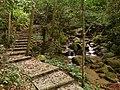九溪庐森林公园 - Jiuxilu Forest Park - 2016.09 - panoramio.jpg