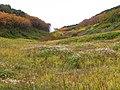 北海沢の谷② - panoramio.jpg