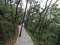 天马山登山道 - Tianma Mountain Trail - 2016.04 - panoramio.jpg