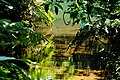 情人湖 Lovers Lake - panoramio (1).jpg