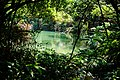 情人湖 Lovers Lake - panoramio (2).jpg
