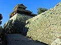 松山城 Matsuyama Castle - panoramio.jpg