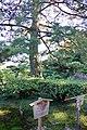 栗林公園 Ritsurin Park - panoramio (3).jpg