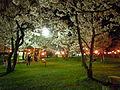 桜野公園20120425②.jpg