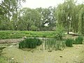 池塘 - Pond - 2011.05 - panoramio.jpg