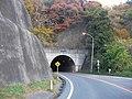 箟岳山のトンネル - panoramio.jpg