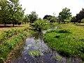 蓼沼公園 2011年5月 - panoramio (2).jpg