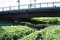 野川 - panoramio (59).jpg