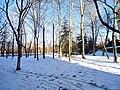 雪后的潍坊学院 2020-12-30 10.jpg