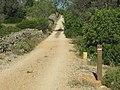 08-06-2017 Way-marker post, Via Algarviana long distance hiking trail, Alfarrobeiras (6).JPG