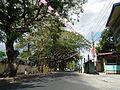 09418jfBinalonan San Manuel Pangasinan Barangays Roads Landmarksfvf 10.JPG