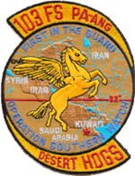 103d Fighter Squadron Operation Southern Watch Emblem