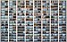 128 Balconies of 1390 Market Street, San Francisco.jpg