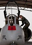 130110-f-oc707-006 Female Fighter Pilot Maj. Olivia Elliott climbs into her A-10 Thunderbolt II.jpg