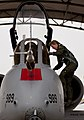 130110-f-oc707-006 Female Fighter Pilot Maj. Olivia Elliott climbs into her A-10 Thunderbolt II.jpg