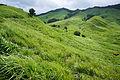 130803 Tonomine highland Kamikawa Hyogo pref Japan11bs3.jpg