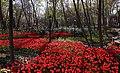 1397010219304030513705204 بوستان باغ ایرانی - ده ونک.jpg