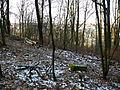 15-02-08-Aussichtsturm-Eberswalde-Brunnenberge-RalfR-P1040304-11.jpg