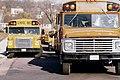 1970sMNschoolbuses.jpg