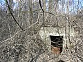 1 PK, išlikęs bunkeris (stebėjimo bokštelis)-WWI, still remaining lookout shelter-Palemono g. - panoramio.jpg