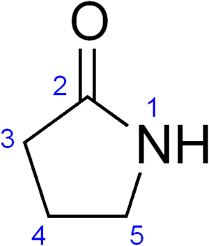 Racetam - 2-Pyrrolidone
