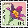 2002. Stamp of Belarus 0485.jpg