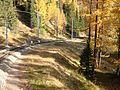 2007 10 Berninabahn 041370.jpg