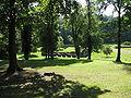 2009-09-08-chorin-45.jpg