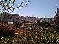 2009 community garden FtMason SanFrancisco 3389949025.jpg