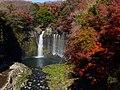 2013-12-02 Shiraito Falls, Fujinomiya(白糸の滝) DSCF9978.jpg