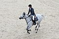 2013 Longines Global Champions - Lausanne - 14-09-2013 - Cameron Hanley et Dundee vd Dwerse Hagen.jpg