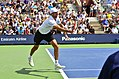 2013 US Open (Tennis) - Qualifying Round - Ivo Karlovic (9699278539).jpg