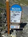 2014 Mountain pass cycling milestone - Cime de la Bonette St Etienne de Tinee 24 downhill.jpg