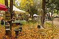 2015-10-17 11-31-09 marche-plantes-belfort.jpg