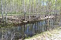2015 47 Национальный парк Мещёрский.jpg
