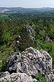 20180430 Rezerwat przyrody Góra Miedzianka 2650 DxO.jpg