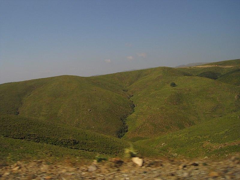File:35960 Küçükbahçe Bucağı-Karaburun-İzmir, Turkey - panoramio (8).jpg