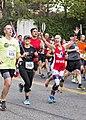 41st Annual Marine Corps Marathon 2016 161030-M-QJ238-062.jpg