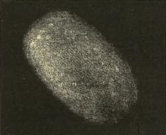 Lost comet - 5D/Brorsen, which was lost after its 1879 apparition.