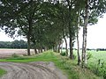 7787 Holtheme, Netherlands - panoramio.jpg