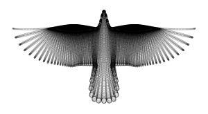 Hamid Naderi Yeganeh - Image: A Bird in Flight by Hamid Naderi Yeganeh 2016
