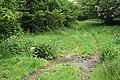 A Farmtrack ford - geograph.org.uk - 450091.jpg