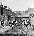 A group of boys set to work creating an allotment on a bomb site in London during 1942. D8956.jpg