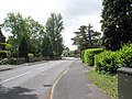 A windy Spring day in Durley Avenue - geograph.org.uk - 1308119.jpg