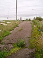 Abandoned section of the A10 - geograph.org.uk - 74703.jpg