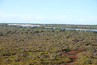 Protected area in South Australia