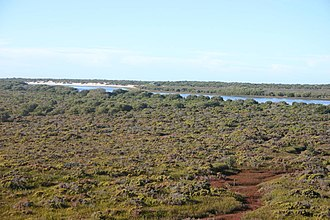 Acraman Creek Conservation Park - Acraman Creek estuary