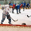 Adler-training-1002613 (43722939485).jpg